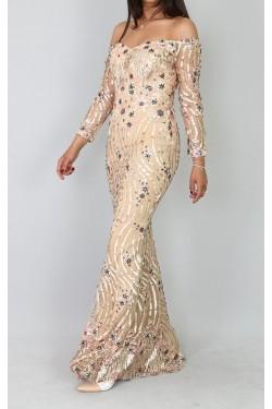 Pul Payet İşleme Vizon Uzun Abiye Elbise